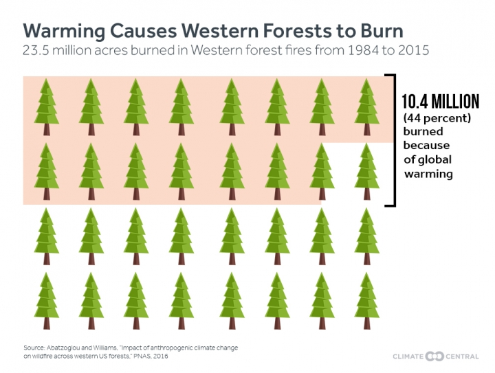 Stats of forest fire for Western Wildfires