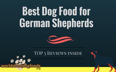 German Shepherd Dog food title