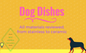 Dog dishes stainless ceramic