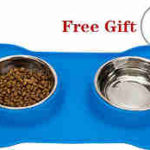 Stainless Steel Dog Bowl No Spill Food and Water Double Bowls