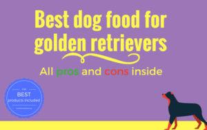 Best dog food for golden retriever