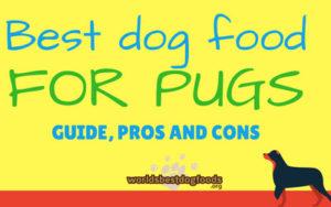 Best dog food for pugs