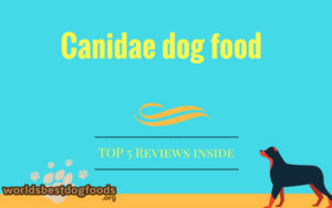 Canidae top 5 selling products reviewed