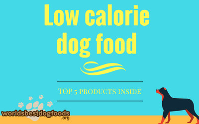 Low calorie dog food