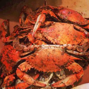 crab dog food