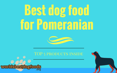 Best dog food for Pomeranian