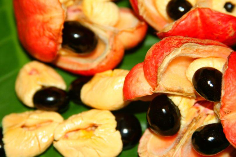 weird fruit ackee fruit