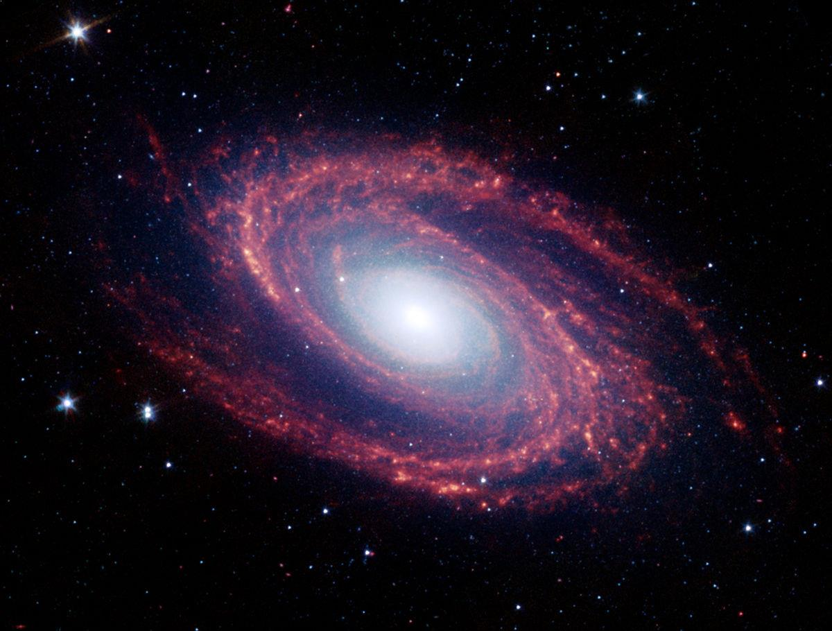 Life in the Universe: Amazing Space Facts