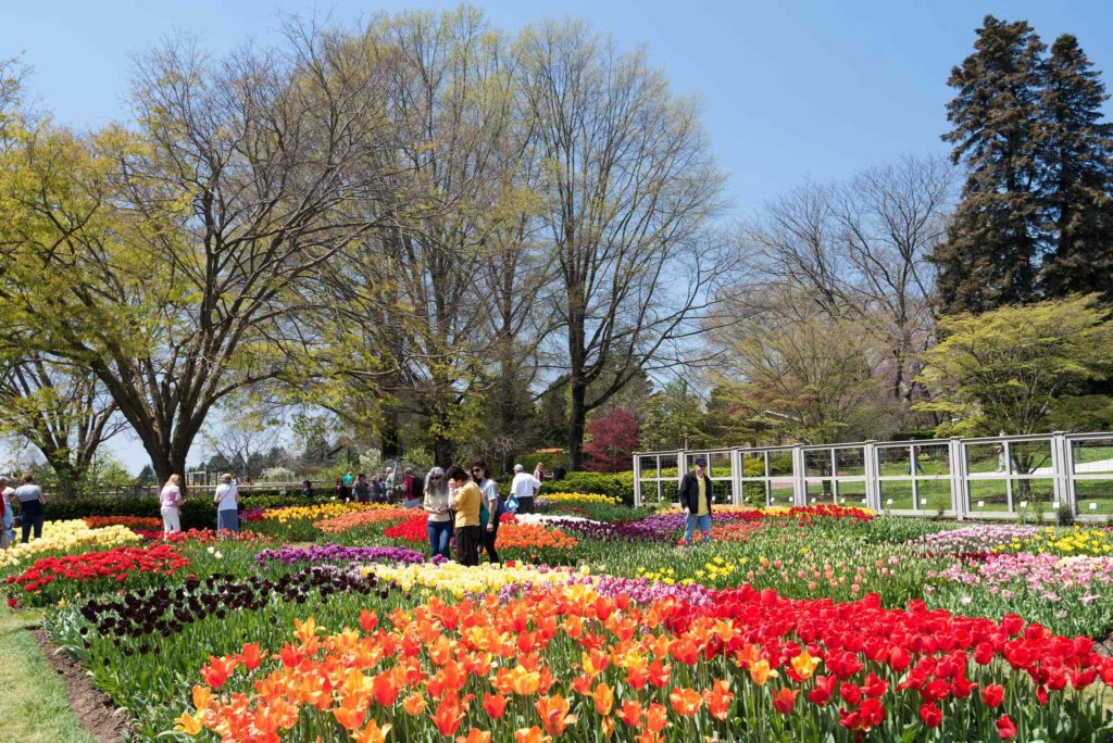 Longwood Gardens, Pennsylvania, United States