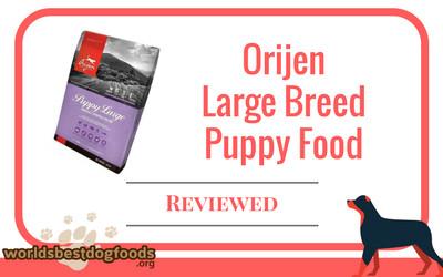 Orijen Large Breed Puppy Food