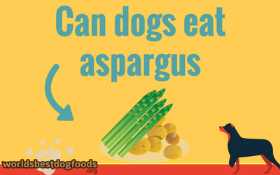 Can dogs eat aspargus