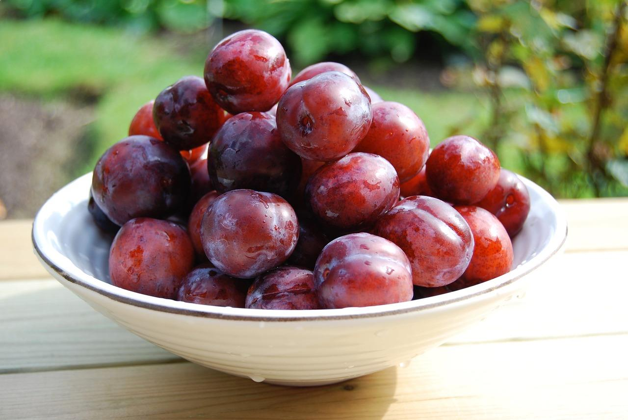 fruits with highest water content