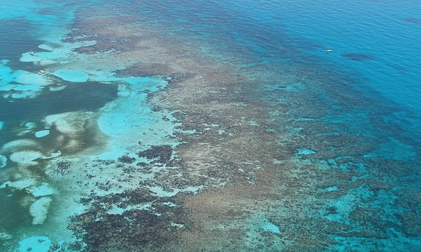 Great Florida Coral Reef System