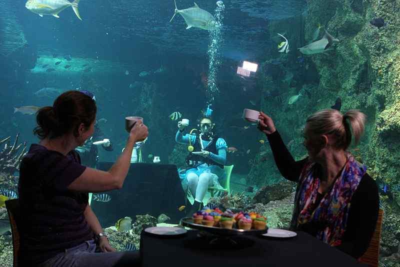 largest aquariums