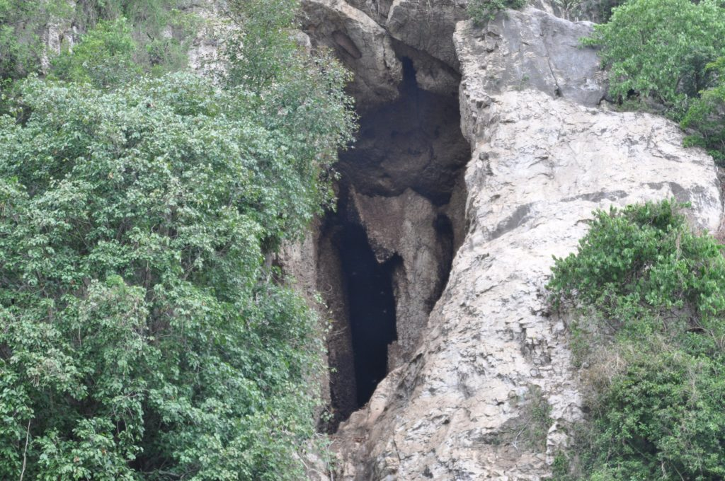 Bat Caves of Battambang